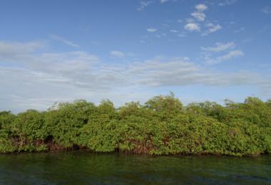 Bocas del Toro et la côte Caraïbes Ouest